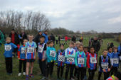 cross coq 2015 2